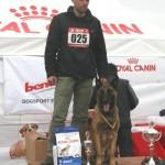 Solo - caini Dogmaster